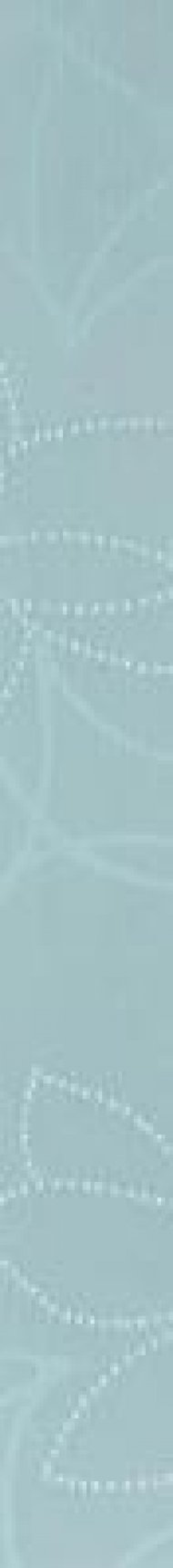 wlamh007-coral-modra-listela.jpg