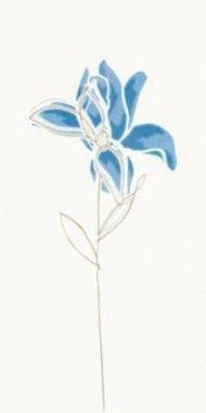 witmb010-tulip-modra-inzerto-kvetinove.jpg