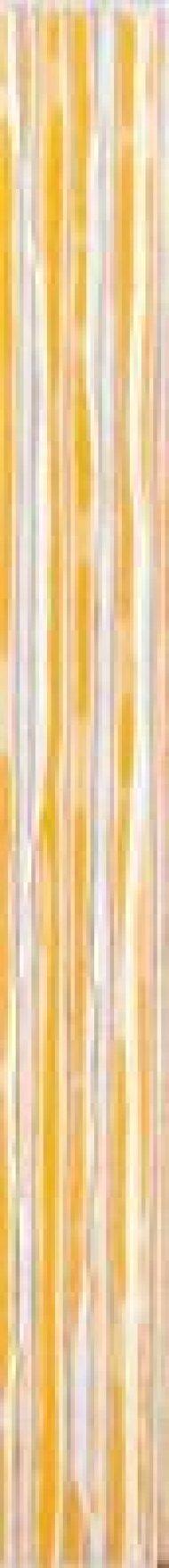 wlamh001-tulip-oranzova-listela.jpg